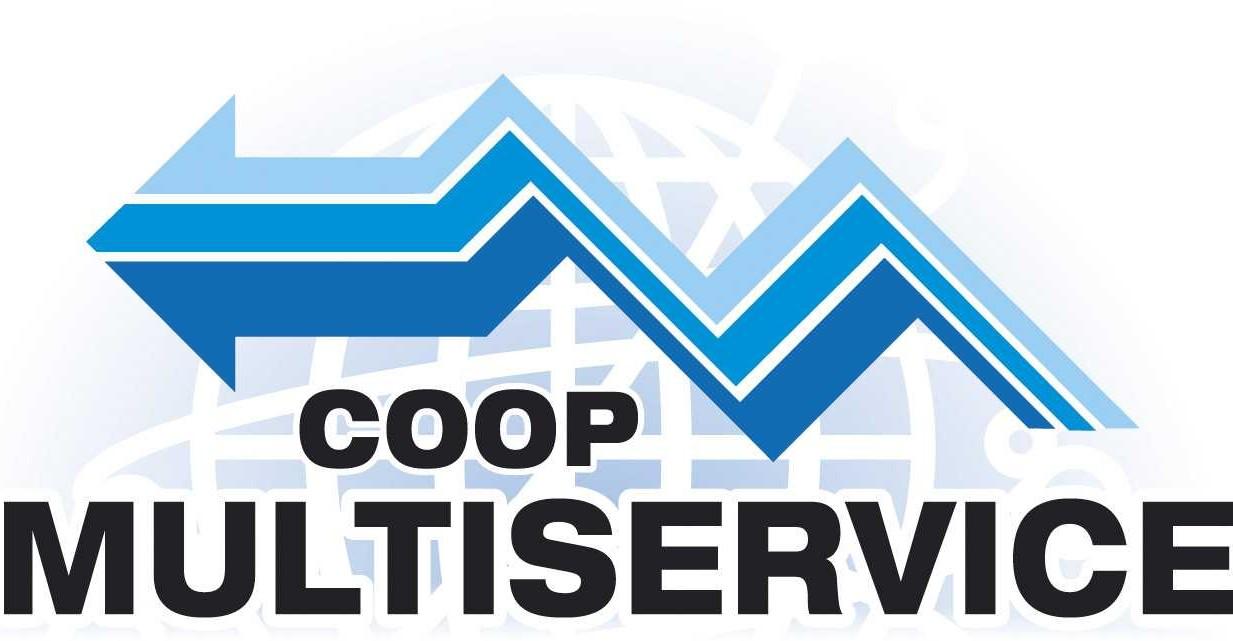 logo multiservice_2005