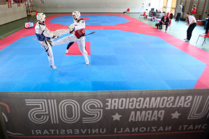 Taekwondo_-11