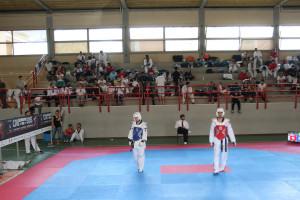 Taekwondo_-6